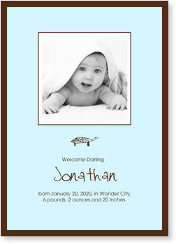 Photo Birth Announcements for Boys – share the news, Boy`s Little Tortoise
