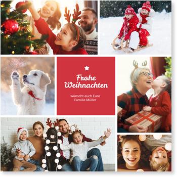 kleiner weihnachtsstern aktuelle weihnachtskarten. Black Bedroom Furniture Sets. Home Design Ideas